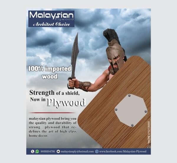 Digital Marketing: Creative Ad design of Malaysian Plywood